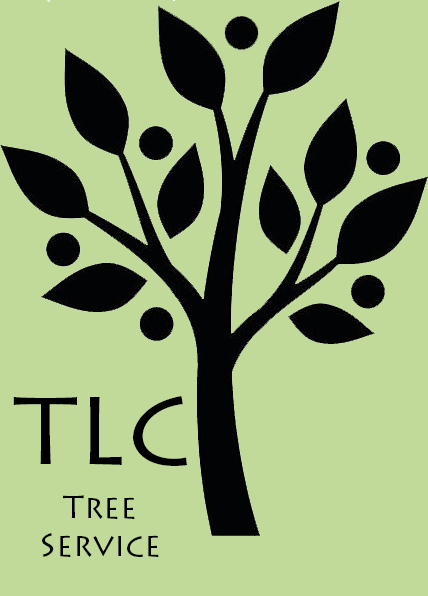 Tender Loving Care logo