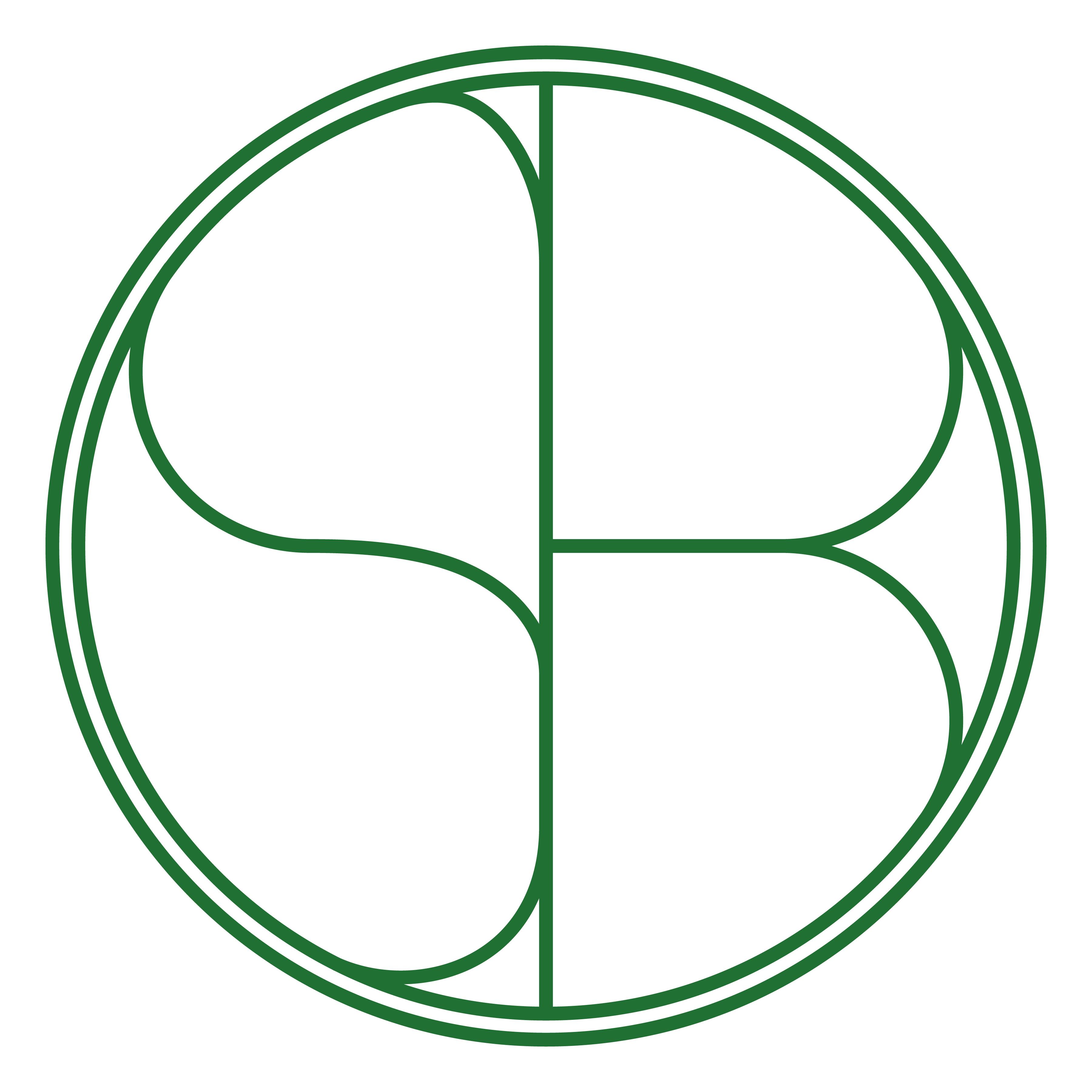 Salty Brothers LLC logo