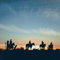 Vino Vaqueros Horseback Riding logo
