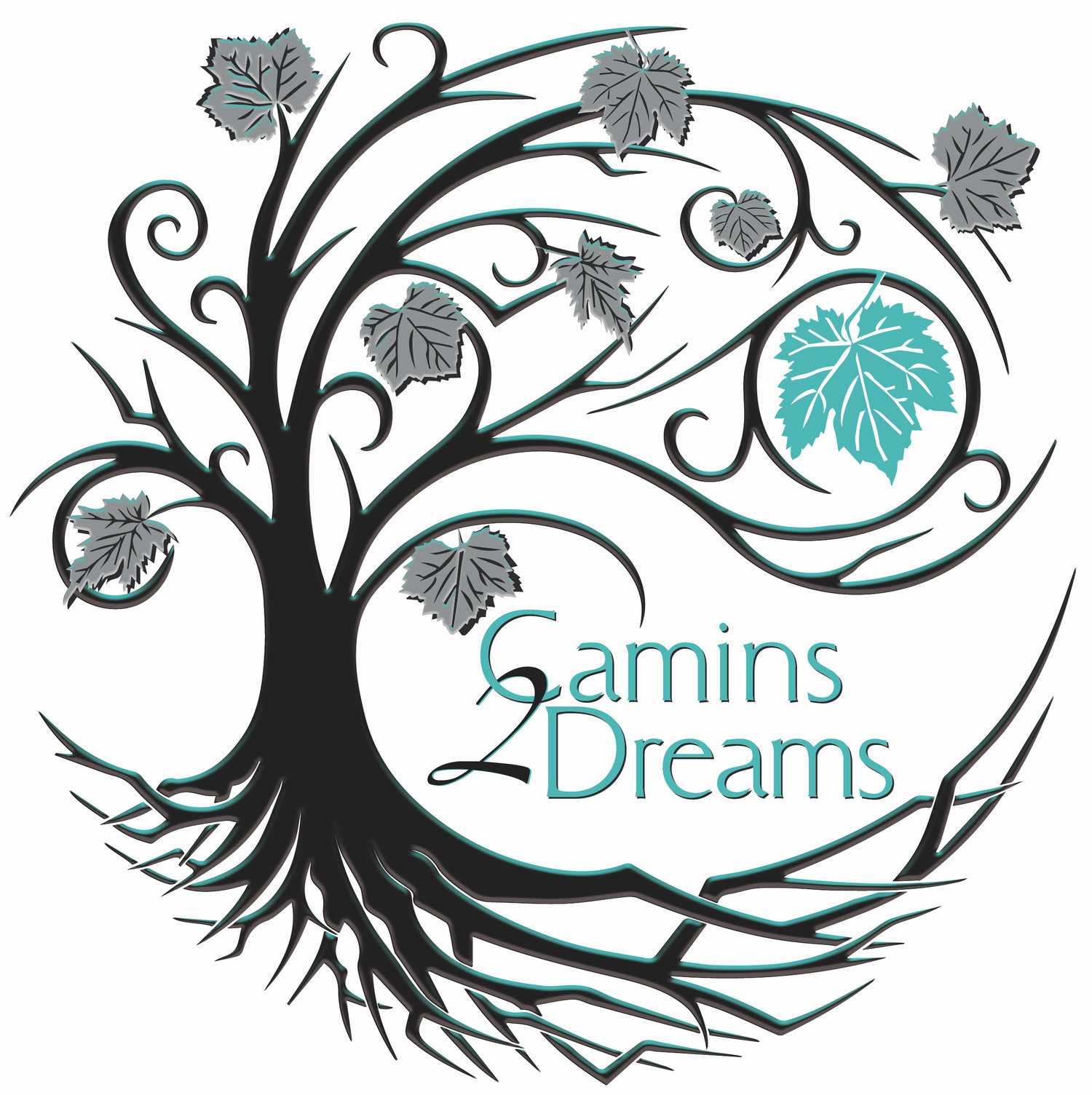 Camins 2 Dreams logo