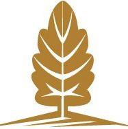Mission Terrace logo