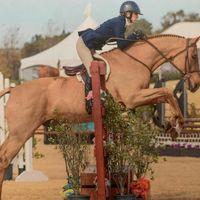 Cali Coast Equestrian LLC logo