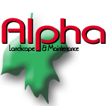 Alpha Landscape & Maintenance logo