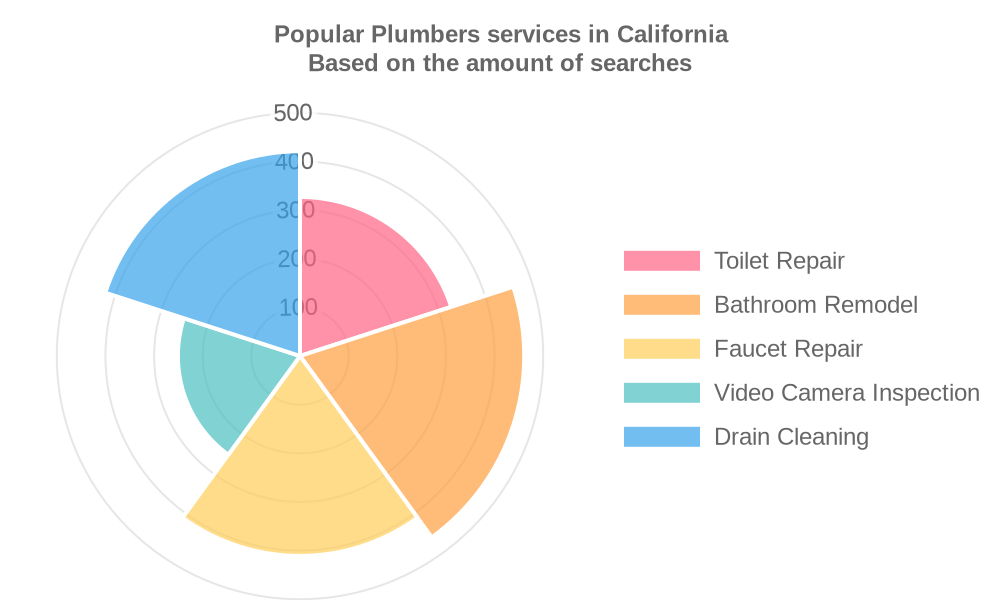 Popular services provided by plumbers in California