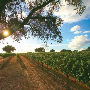 Photo uploaded by Fess Parker Winery