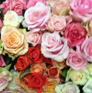 Photo uploaded by Padaro Floral