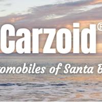 Carzoid logo