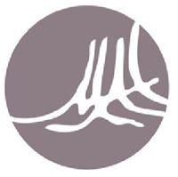 Montecito Aesthetic Institute logo