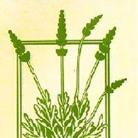 Foothill Nursery logo