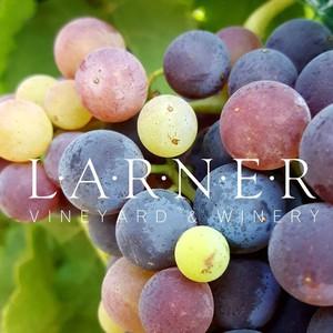 Photo uploaded by Larner Vineyard & Winery