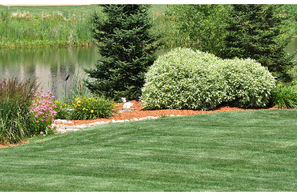 Photo uploaded by J W'S Weedwhacking & Landscape Services