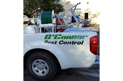 Photo uploaded by O'Connor Family Pest Control