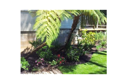 Photo uploaded by Casa Landscape Maintenance