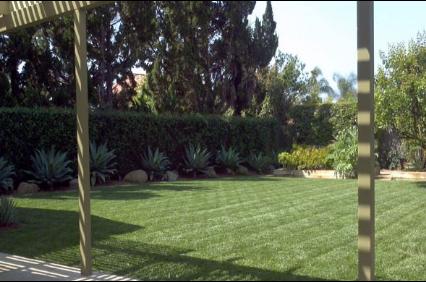 Photo uploaded by Saul Cortez Landscape Design Inc