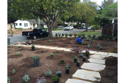Photo uploaded by Sal's And Brothers Landscapes