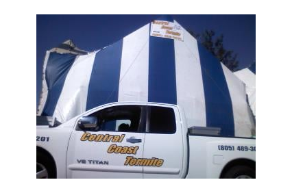 Photo uploaded by Central Coast Termite & Pest Control