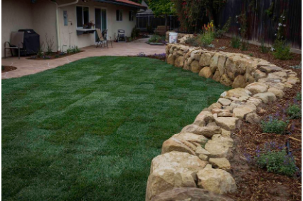 Photo uploaded by Salinas Tree Service