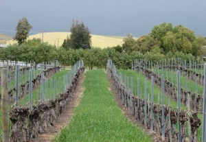 Photo uploaded by Dascomb Cellars