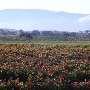 Photo uploaded by Santa Ynez Valley Assoc Of Realtors