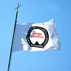 Santa Lucia Farm Inc logo
