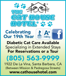 Yellow Pages Ad of Cat House Hotel The