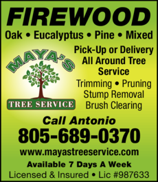Yellow Pages Ad of Maya's Tree Service