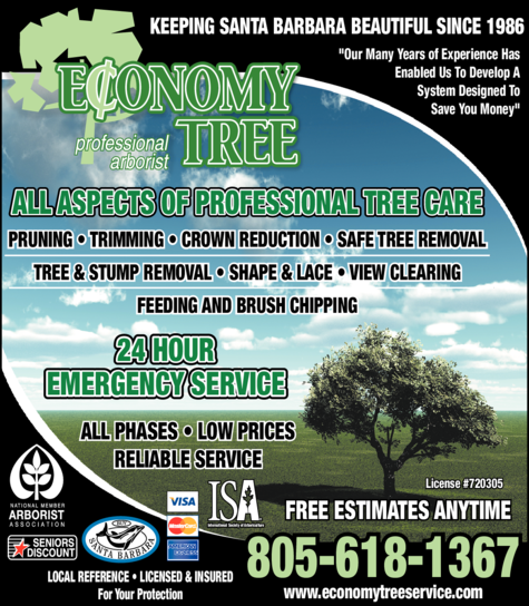 Yellow Pages Ad of Economy Tree Service