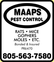 Yellow Pages Ad of Maaps Pest Control