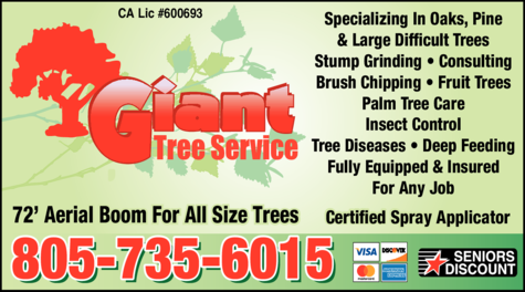 Yellow Pages Ad of Giant Tree Service
