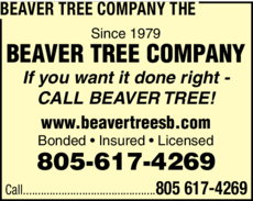 Yellow Pages Ad of Beaver Tree Company The