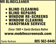 Yellow Pages Ad of Mr Blindcleaner