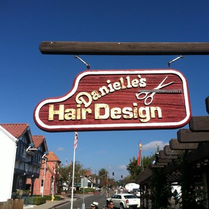 Danielle's Hair Design logo