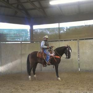 Photo uploaded by Juan A Lara Saddlery