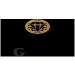 Himelsein Group logo