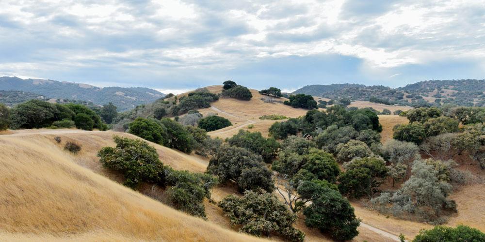 Hills near Los Alamos